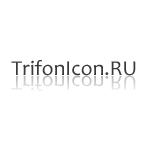 ООО Trifonicon